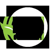 eisa_logo